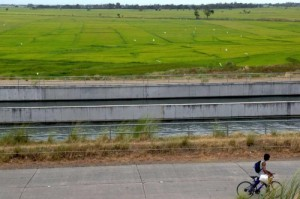 The main canal from Pantabangan Reservoir irrigates around 90,000 hectares in the Philippines' Central Luzon region. (Photo: Raymond Jose Panaligan)