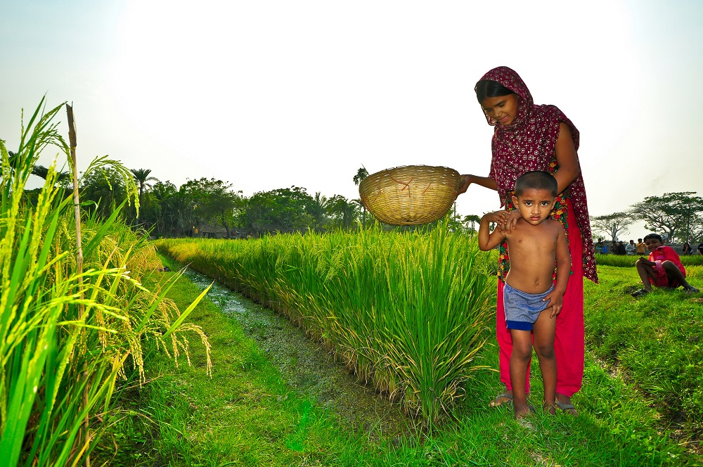 farming-family-bangladesh
