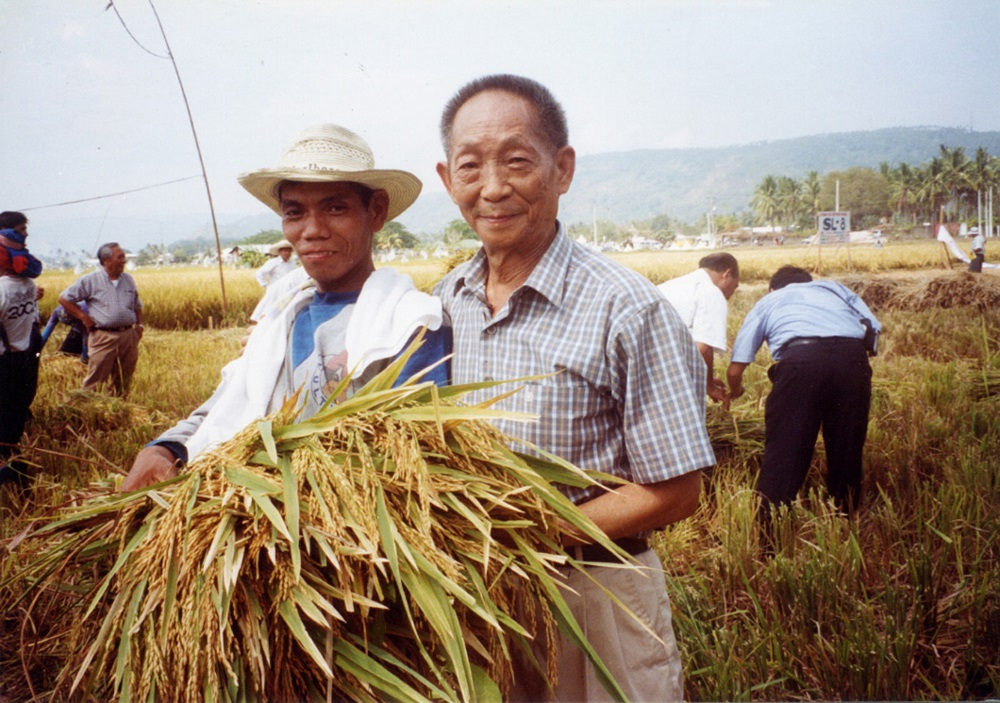 The Father of hybrid rice says that increases in grain production because of planting hybrid rice are key to strengthening China as the world's second-largest economy. (Photo: IRRI)