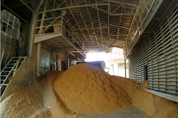 Once an unwanted waste material, rice husk is now used as fuel for generating electricity for households and industries as well as a replacement for wood in many products. (Photo: IRRI)
