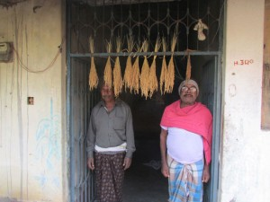 Braided Swarna-Sub1 paddy is hung in front of the house to bring prosperity. (Photo: Debdutt Behura)