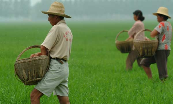 Farmers holding rice baskets.