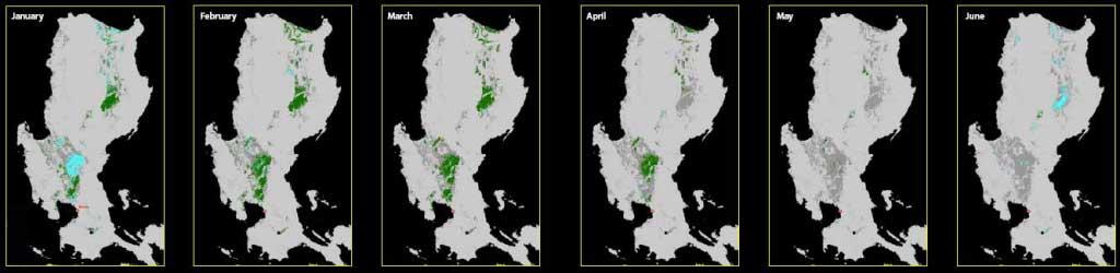 Progression of rice crop in Luzon, Philippines
