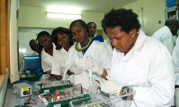 Ms. Afolabi Oluwatoyin Oluwakemi (far right), research assistant at AfricaRice Center is training young researchers how to detect pathogens that cause diseases in rice. (Photo: R. Raman,  AfricaRice)