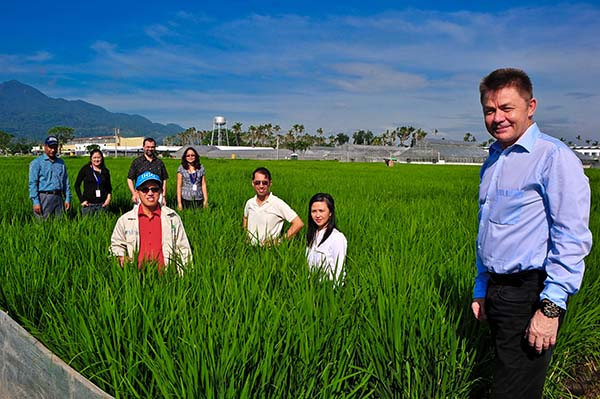 THE CORE TRB team members take a break in one of their multi-environment trial plots. Foreground: Eero Nissilä; middle row (left to right): Glenn Gregorio, Bert Collard, Richievel Ibanez; background (left to right): Rafiqul Islam, Gina Vergara, Michael Thomson, Alice Laborte. (Photo: Isagani Serrano)