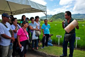 Many of IRRI's new technologies are tested in the Philippines and first made available to Filipino farmers ahead of the rest of the world.