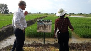 Dr. Matthew Morell, IRRI deputy director general for research, and Dr. Rosemary Murori, IRRI rice breeder, visit the IRRI research site near the town of Bagamoyo, Tanzania. (Photo: IRRI)