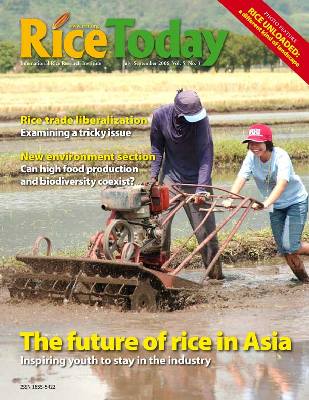 RT05-3-cover
