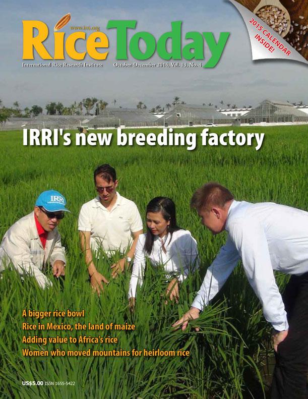 IRRI's new breeding factory