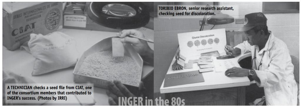INGER in the 1980s