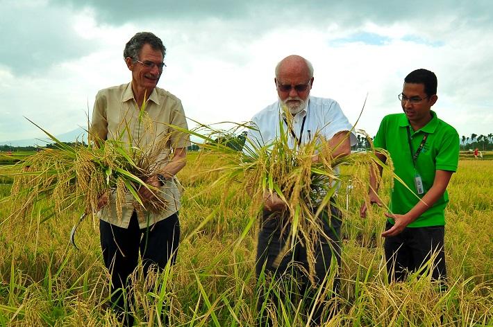 150th_crop_Harvest_Buresh_Zeigler_Correa