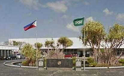 33. IRRI-Philippine flags