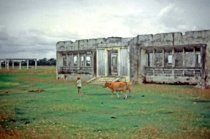 Agricultural Research facilities damaged during the war in Cambodia. (Photo: G. Denning)