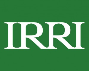69. IRRI logo