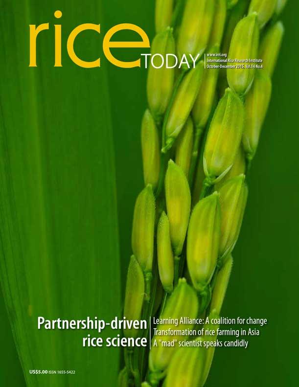 Partnership-driven rice science