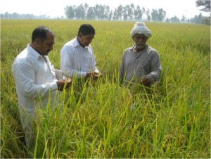 2. QCs with farmer