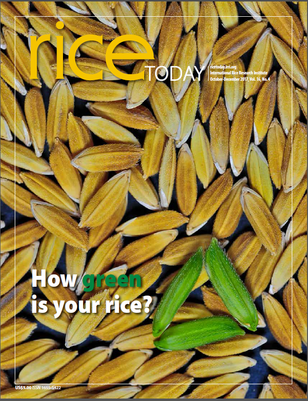 Rice Today | October-December 2017