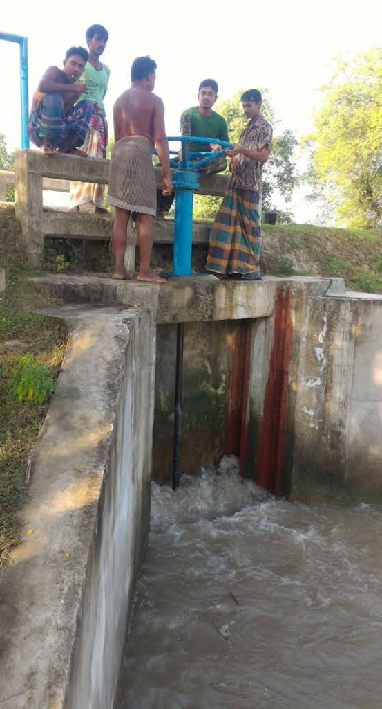 The lack of water governance in timing the opening and closing of sluice gate is a major hindrance to agricultural productivity in the polder communities of Bangladesh. (Photo: IRRI)