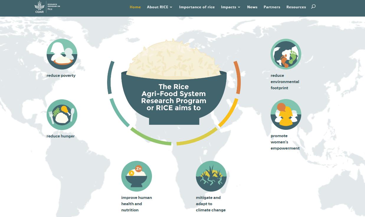 RICE website