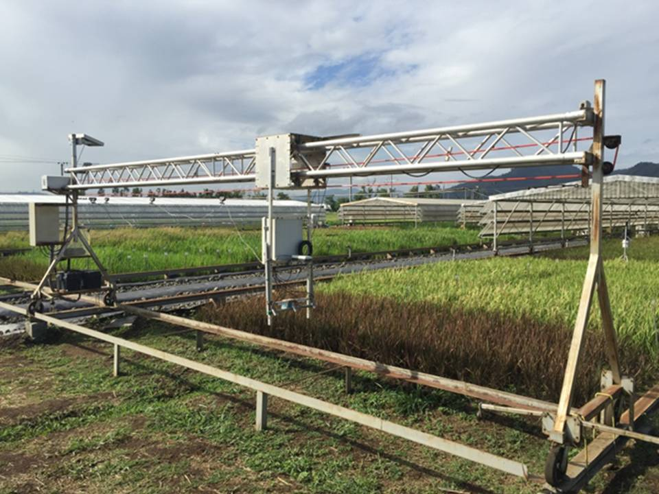 The rainout shelter mobile sensor rack for drought physiological studies. (Photo by S. Klassen)