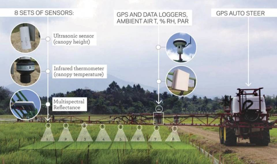 A tractor-based platform for field based phenomics. (Photo by S. Klassen, IRRI).