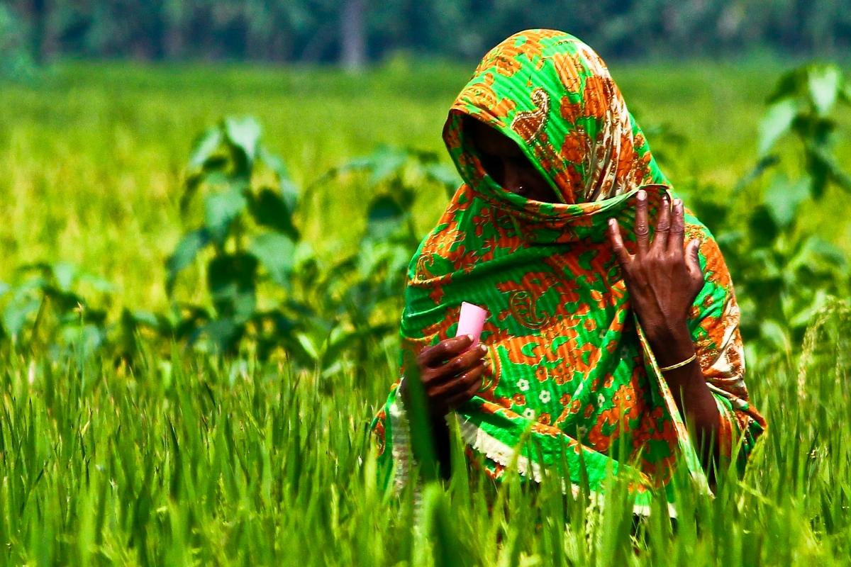 A woman farmer in Bangladesh. (Photo: IRRI)