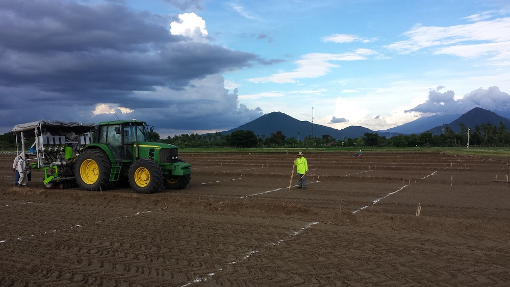 DSR plot seeding using the Wintersteiger Monoseeder. (Photo: IRRI)