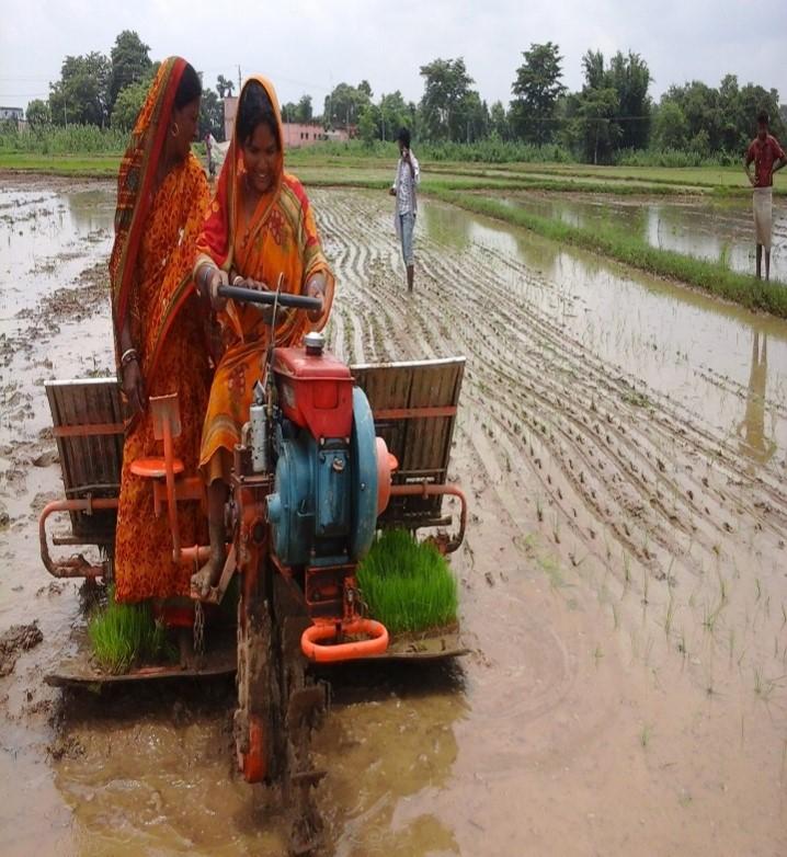 Women farmers doing mechanical transplanting. (Photo: ITC )