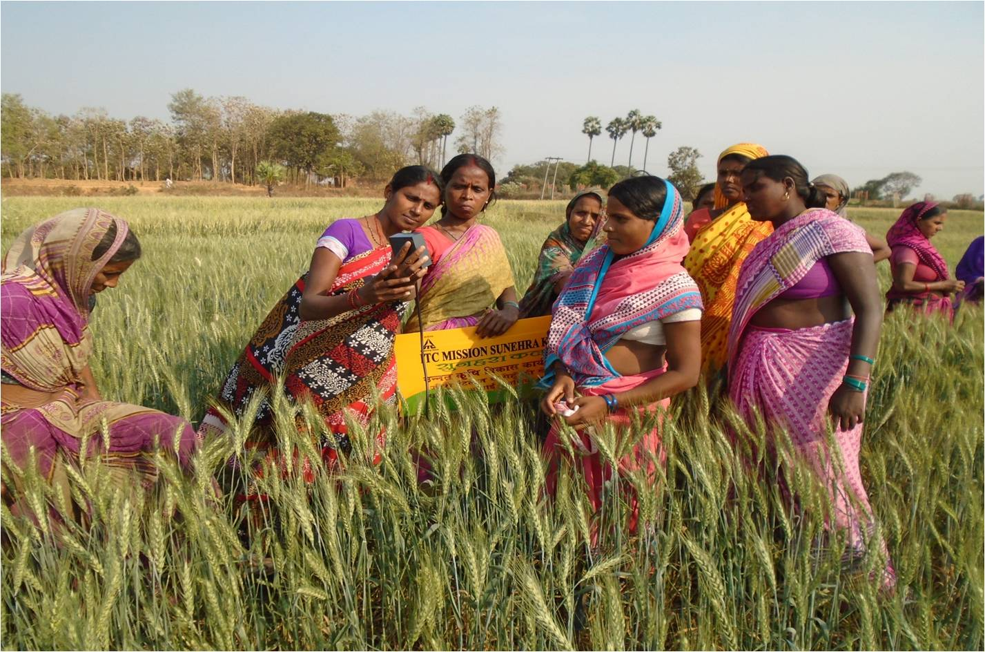 Women farmers in Munger India. (Photo: ITC)