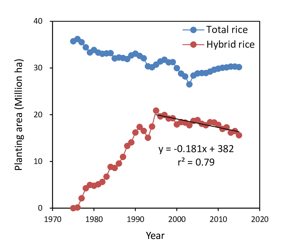 Figure 1. Total and hybrid rice planting area in China from 1975 to 2015. The linear regression was performed by plotting the hybrid rice planting area (y) versus the year (x) from 1995 to 2015. The data of total rice planting area were collected from the World Rice Statistics Database (IRRI, 2018). The data of the hybrid rice planting area for 1975 to 2013 were collected from Hu et al. (2016). The data of hybrid rice planting area for 2014 and 2015 were provided by Zhongxiao Hu of the China National Hybrid Rice Research and Development Center.