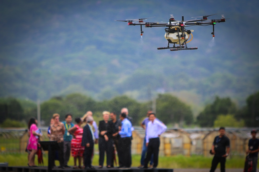 A demonstration of the agricultural use of drone technology at the IRRI headquarters in the Philippines. (Photo by Isagani Serrano, IRRI)
