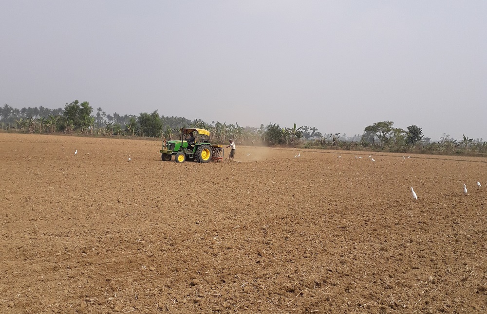 A field demonstration on line sowing of pulses using a seed and fertilizer drill. (Photo: IRRI India)