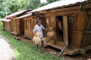 Multi-tasking mother, as she babysits while tending to her farm chores drying rice and grains.